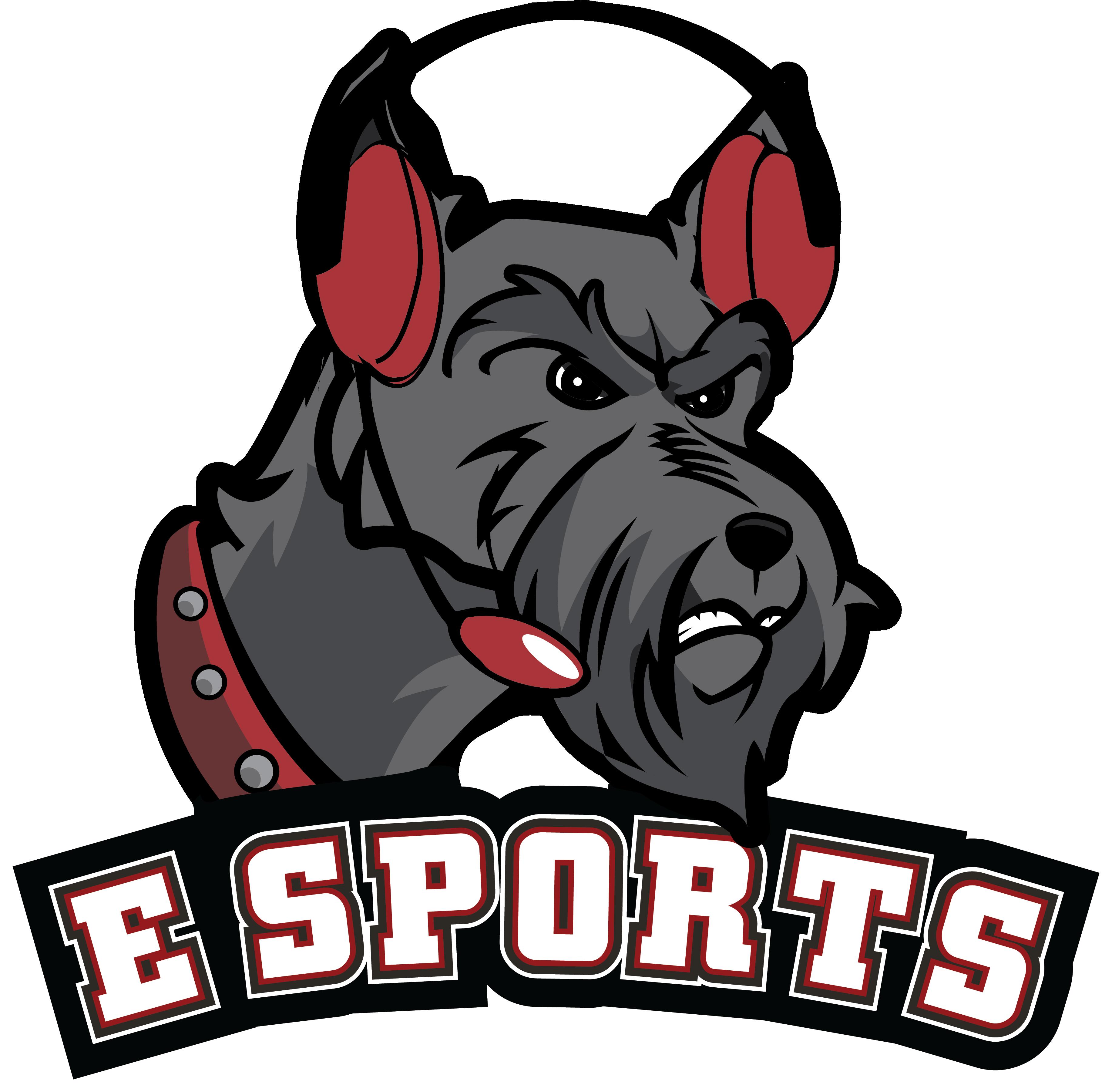 eSports Icon